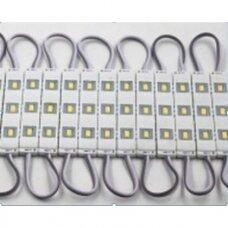 LED MODULIS Module 0,9W CW