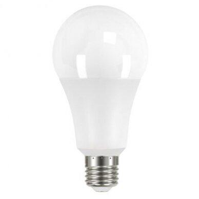 LED lemputė A80 18W E27 220-240V Greelux