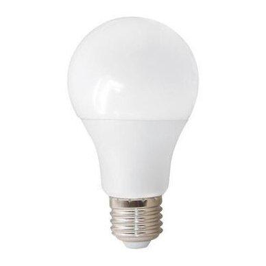 LED LEMPUTĖ E27 A60 bulb 9W WW