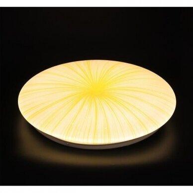 Lubinis LED šviestuvas Ivory Sun